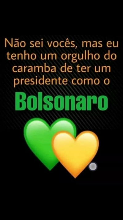 Bolsonaro 2022: Patriotas